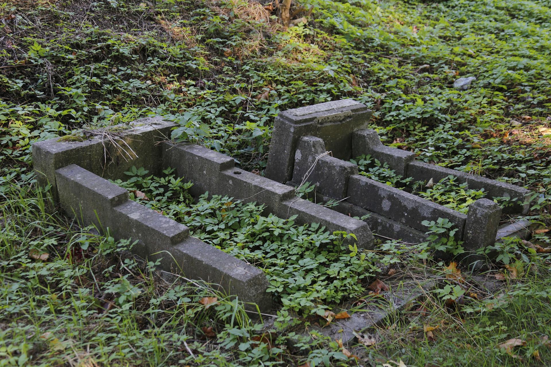 cmentarz poznań